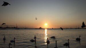 Sunrise at Gravesend Rowing Club